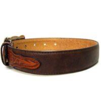N4428602 Brown Childrens Belt1